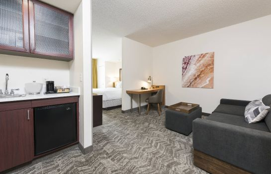 Suite SpringHill Suites Grand Rapids North SpringHill Suites Grand Rapids North