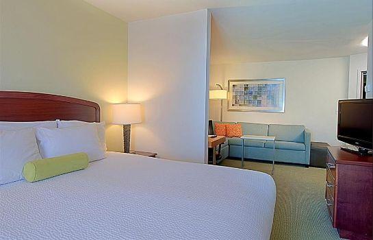 Hotel Springhill Suites Tampa Westshore Airport Hotel De