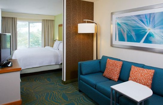 Room SpringHill Suites Atlanta Six Flags