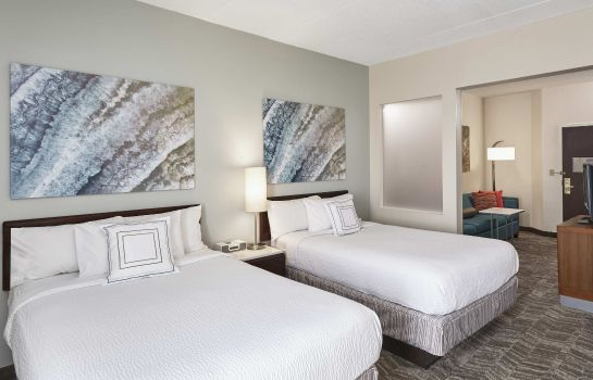 Kamers SpringHill Suites Chicago Schaumburg/Woodfield Mall