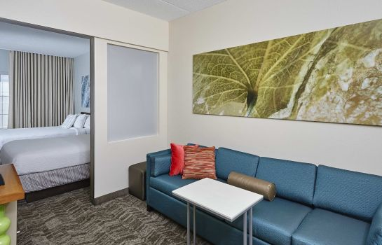 Zimmer SpringHill Suites Chicago Schaumburg/Woodfield Mall