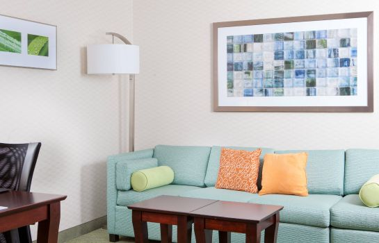 Suite SpringHill Suites Norfolk Virginia Beach