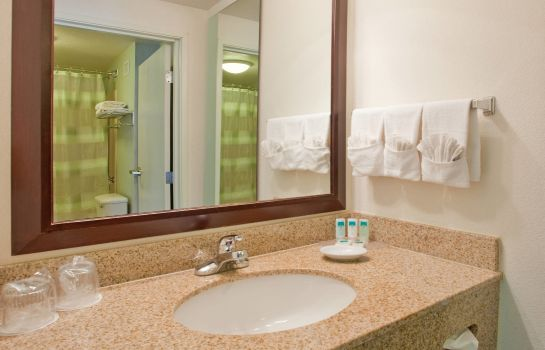 Suite SpringHill Suites Austin North/Parmer Lane