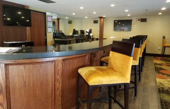 Hotel bar Radisson Hotel Detroit-Farmington Hills