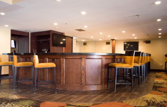 Bar hotelowy Radisson Hotel Detroit-Farmington Hills