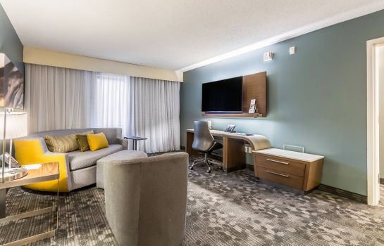 Suite Courtyard Dallas DFW Airport South/Irving