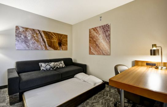 Suite SpringHill Suites Lexington Near the University of Kentucky