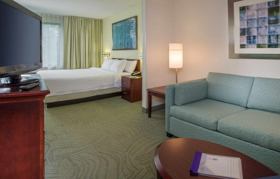 Kamers SpringHill Suites Raleigh-Durham Airport/Research Triangle Park