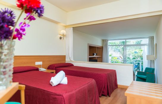 Double room (standard) Roc Lago Rojo
