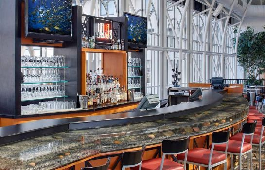 Hotel bar Galt House Hotel