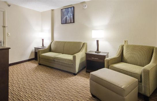 Zimmer BEST WESTERN RIVER CITY HOTEL