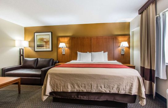 Suite Comfort Inn Mobile