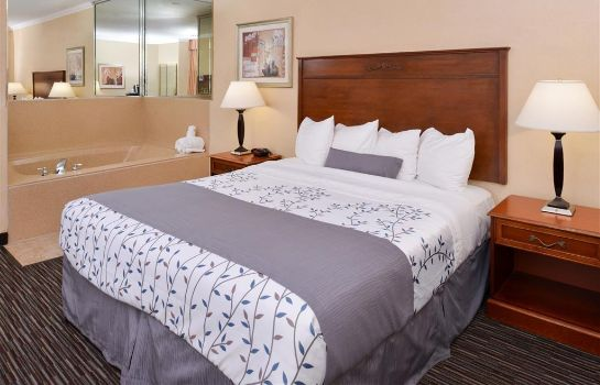 Suite BEST WESTERN AIRPARK HOTEL