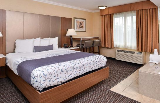 Suite Best Western Airpark Hotel-Los Angeles LAX Airport