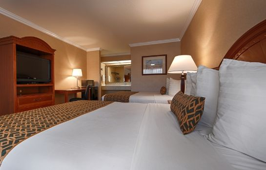 Chambre BEST WESTERN AIRPARK HOTEL
