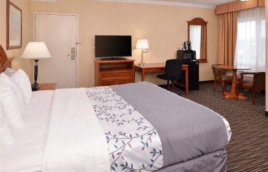 Room BEST WESTERN AIRPARK HOTEL