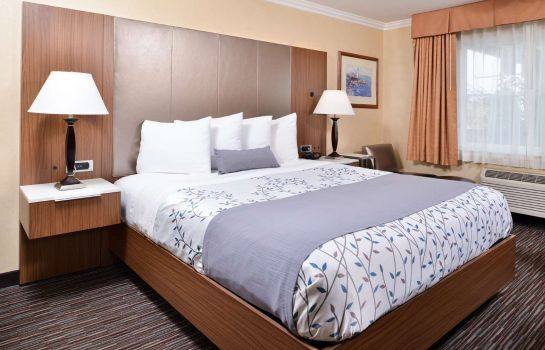 Chambre Best Western Airpark Hotel-Los Angeles LAX Airport