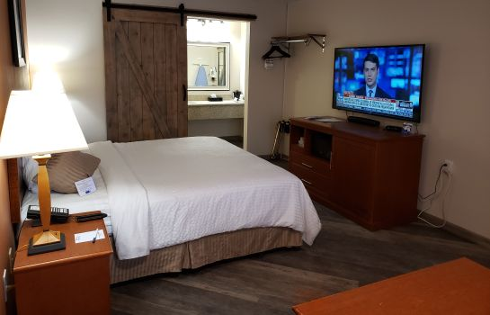 Chambre individuelle (confort) AIRPORT INN