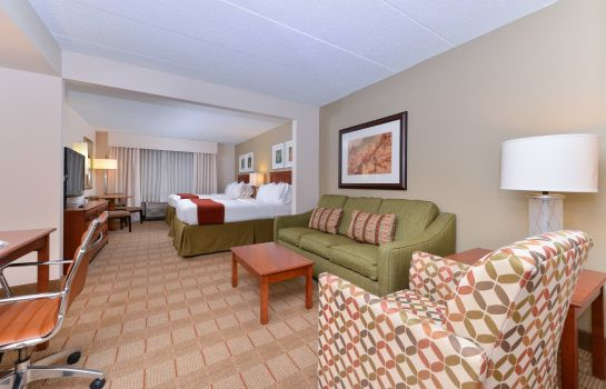 Suite Holiday Inn Express & Suites INDIANAPOLIS DTN-CONV CTR AREA