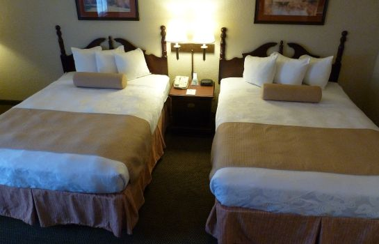 Chambre Holiday Inn Express & Suites EVANSVILLE NORTH