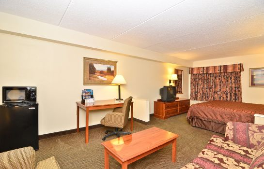 Suite Holiday Inn Express & Suites RALEIGH NE - MEDICAL CTR AREA