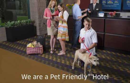 Info Best Western Plus Bayshore Inn