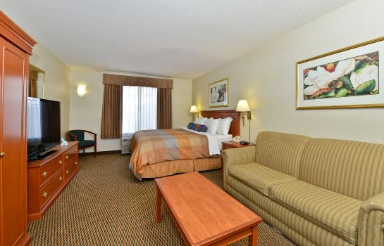 Zimmer BW PLUS AIRPORT INN AND SUITES
