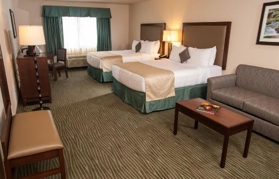 Zimmer Best Western Plus Eagle Lodge & Suites
