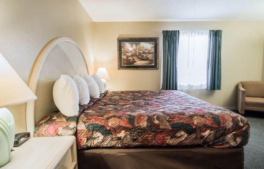 Suite Rodeway Inn and Suites Haines City