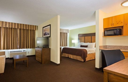Suite Best Western Plus Holland Inn & Suites