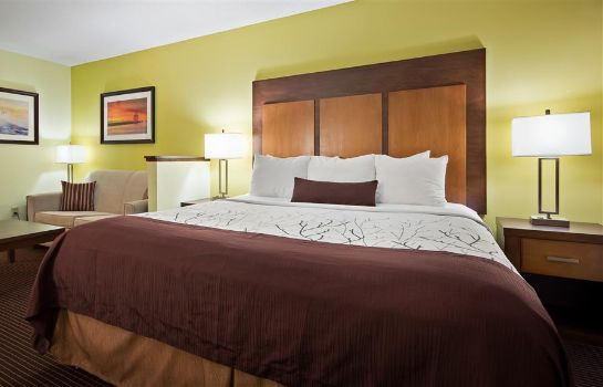 Room Best Western Plus Holland Inn & Suites