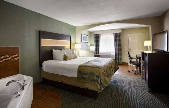 Zimmer BEST WESTERN EXECUTIVE SUITES