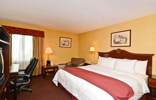 Zimmer BEST WESTERN GARDEN EXECUTIVE HOTEL
