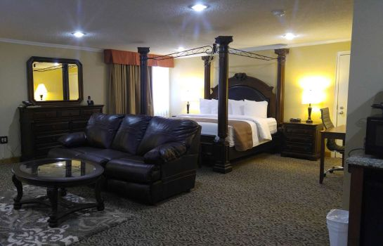 Suite Best Western Wooster Hotel & Conference Center