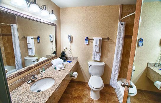 Zimmer BEST WESTERN PLUS NORTH CANTON