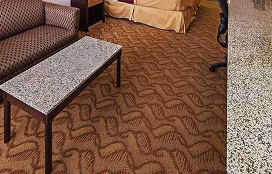 Zimmer TEXAS INN AND SUITES - RAYMONDVILLE
