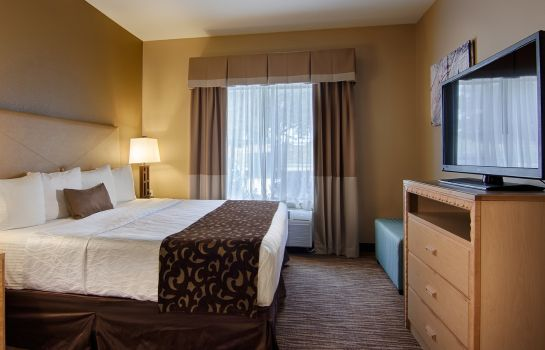 Suite BEST WESTERN PLUS DFW AIRPORT