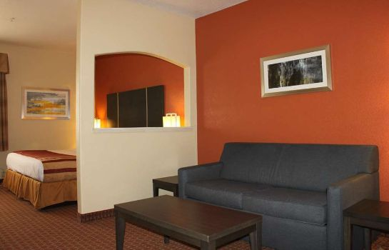 Suite BW PLUS NORTH HOUSTON INN STES