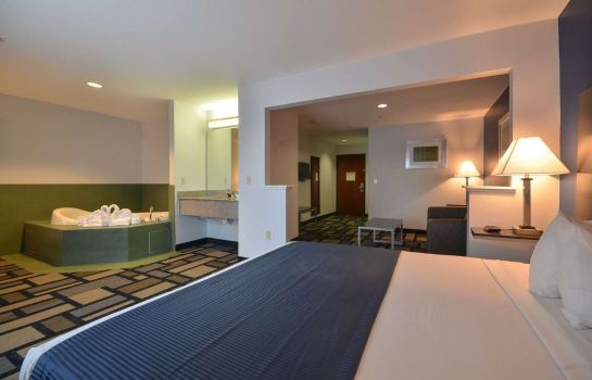 Suite BEST WESTERN GALLERIA INN STS