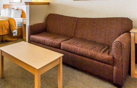 Suite Quality Inn and Suites Lodi