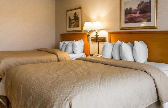 Chambre Quality Inn and Suites Lodi