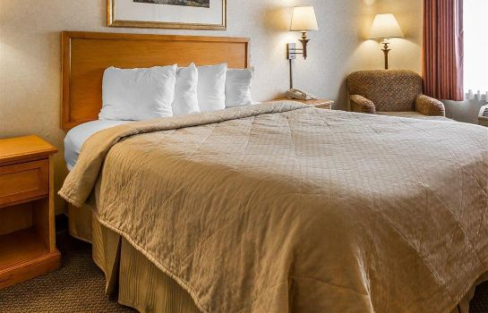 Room Quality Inn and Suites Lodi