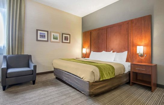 Suite Comfort Inn & Suites Collingwood