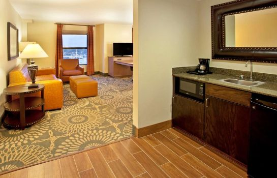 Suite Hampton Inn - Suites Austin-Downtown-Convention Center TX