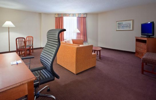 Suite Holiday Inn Express & Suites REGINA DOWNTOWN