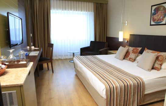 Double room (standard) Kolin Hotel