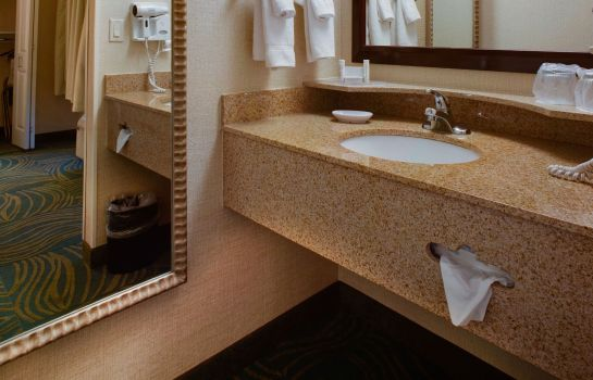 Zimmer SpringHill Suites Savannah Airport