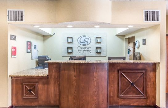 Hotelhalle Comfort Suites North Dallas