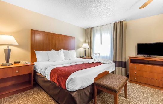 Suite Comfort Suites North Dallas