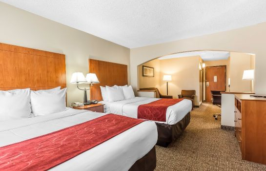 Zimmer Comfort Suites North Dallas